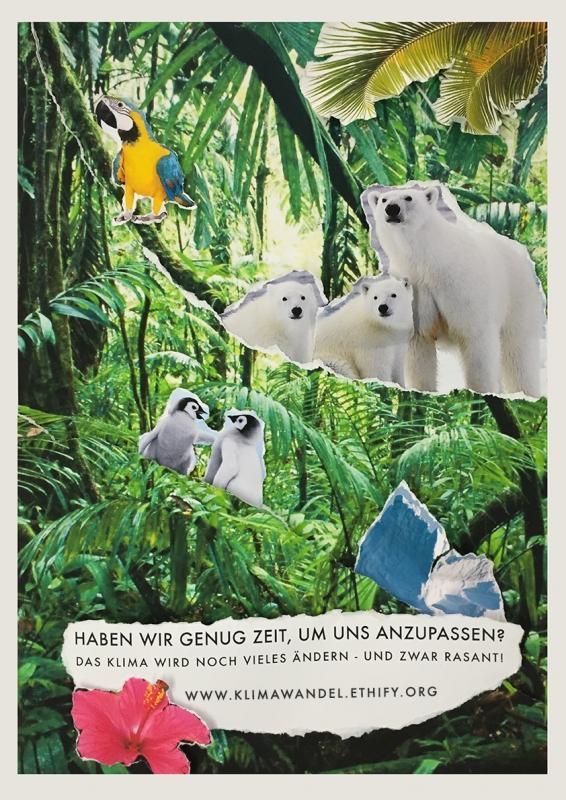 Eisbären im Dschungel