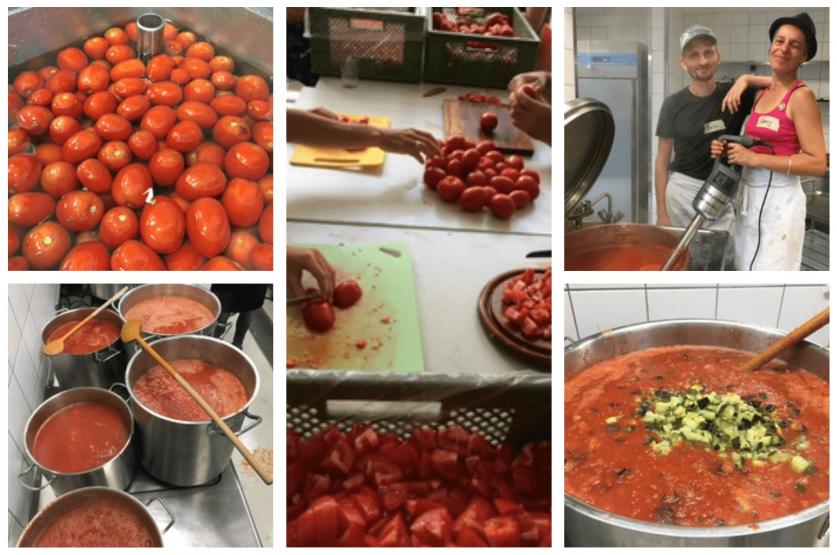 Kartoffelkombinat-Tomatensugoaktion