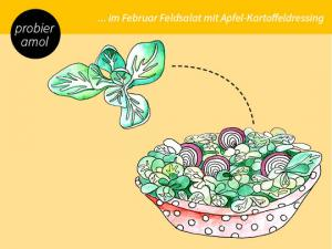 Feldsalat mit Apfel-Kartoffel-Dressing
